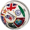 Picture of Cricket Ball World Cup History 2019 Edition (5.5 Oz Weight)