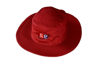 Picture of Sunhat Maroon by CE
