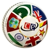 T20 World Cup Ball